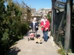 Kiki im Zoo