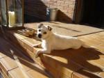 Caty ist ein Sonnenschein!